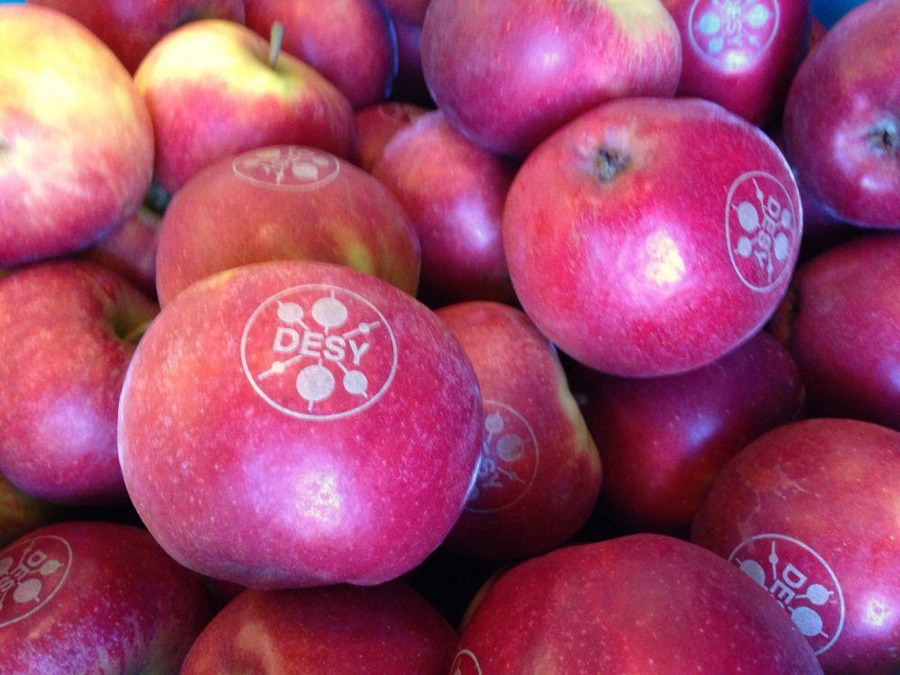CO2 laser marked apples
