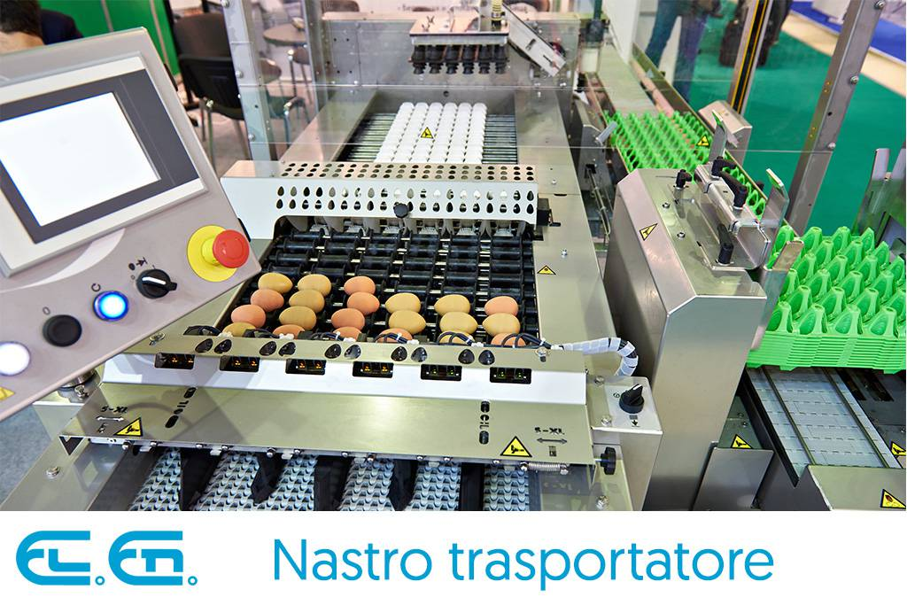 A conveyor belt for eggs